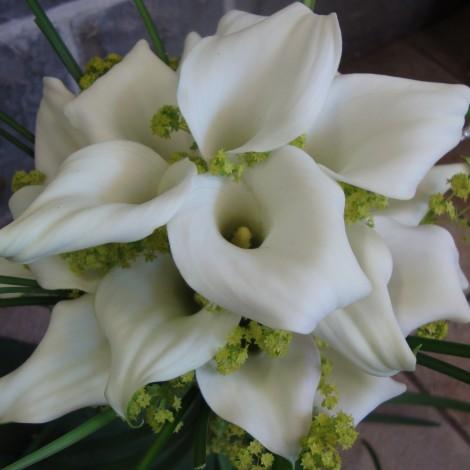 Poročni šopek bele Kale 1