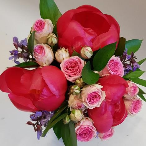 Šopek potonike in vrtnice