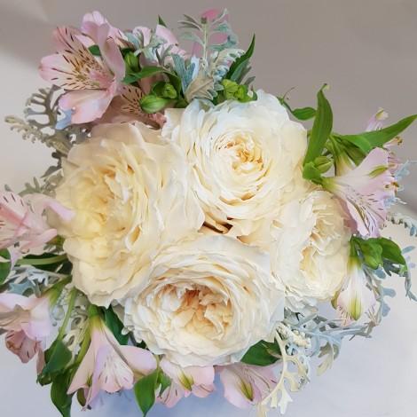 Šopek krem dišeča vrtnica