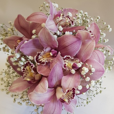 Šopek orhideje