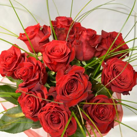 Ducat rdečih vrtnic