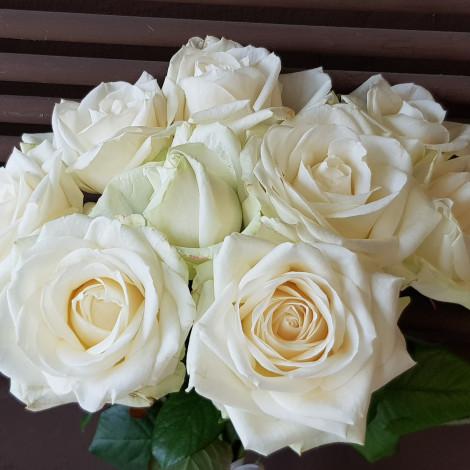 Enostaven šopek belih vrtnic