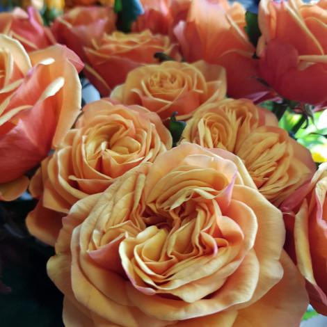Šopek oranžnega cvetja