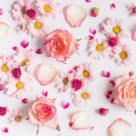Cvetje izberemo mi